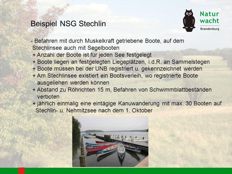 Beispiel NSG Stechlin - Befahren mit durch Muskelkraft getriebene Boote, auf dem Stechlinsee auch mit Segelbooten + Anzahl der Boote ist für jeden See