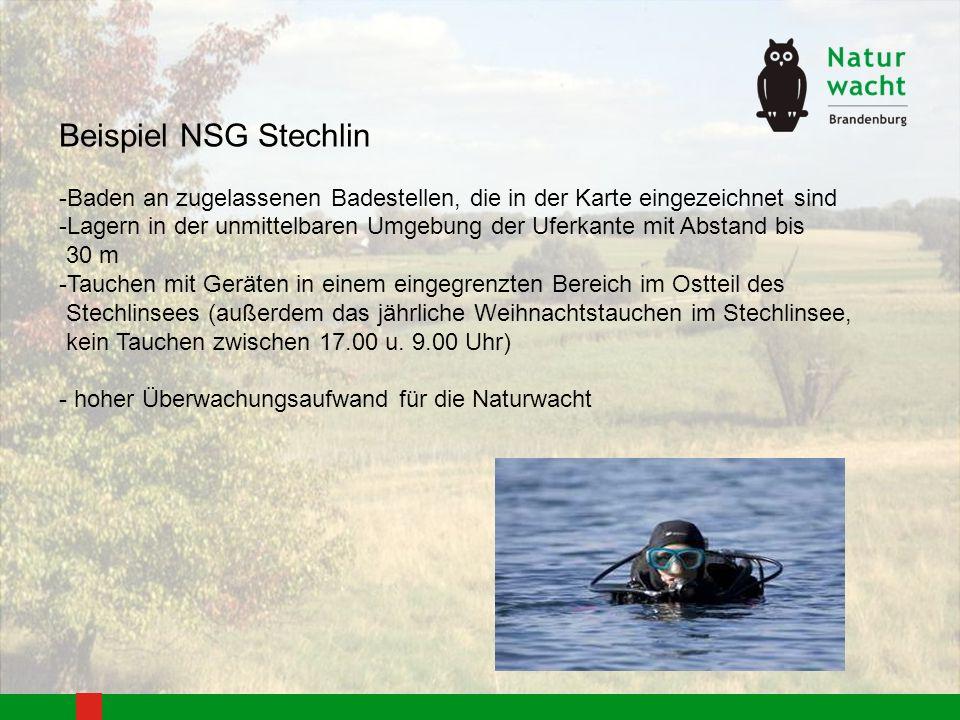 Beispiel NSG Stechlin -Baden an zugelassenen Badestellen, die in der Karte eingezeichnet sind -Lagern in der unmittelbaren Umgebung der Uferkante mit