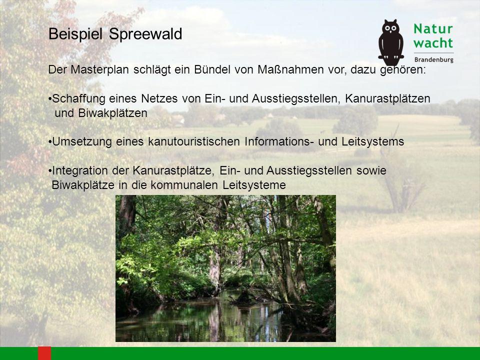 Beispiel Spreewald Der Masterplan schlägt ein Bündel von Maßnahmen vor, dazu gehören: Schaffung eines Netzes von Ein- und Ausstiegsstellen, Kanurastpl
