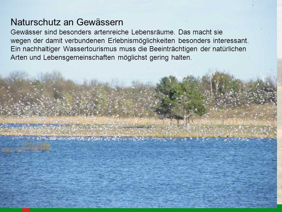 Naturschutz an Gewässern Gewässer sind besonders artenreiche Lebensräume. Das macht sie wegen der damit verbundenen Erlebnismöglichkeiten besonders in