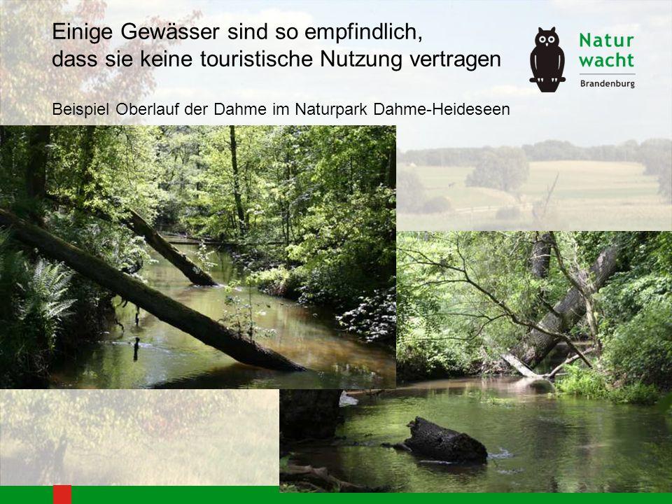 Einige Gewässer sind so empfindlich, dass sie keine touristische Nutzung vertragen Beispiel Oberlauf der Dahme im Naturpark Dahme-Heideseen