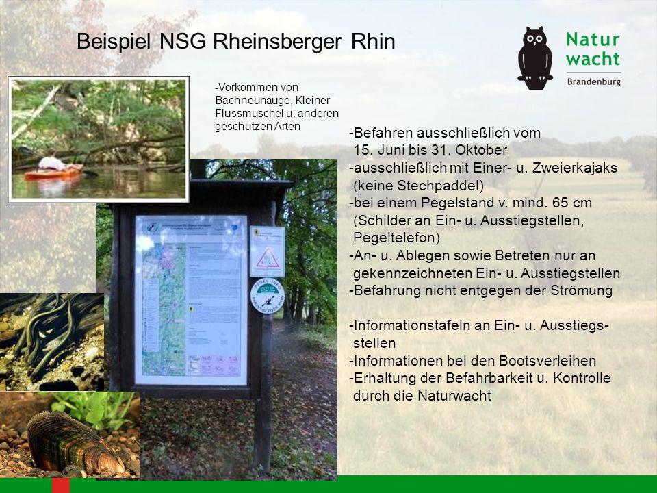 Beispiel NSG Rheinsberger Rhin -Befahren ausschließlich vom 15. Juni bis 31. Oktober -ausschließlich mit Einer- u. Zweierkajaks (keine Stechpaddel) -b
