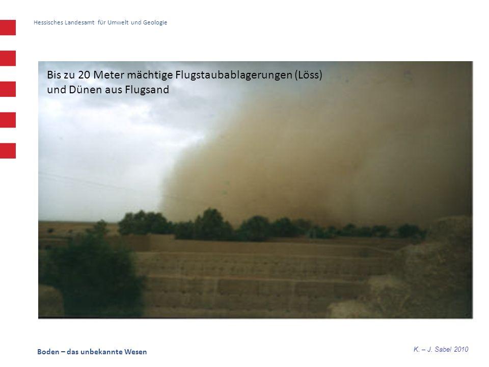 K. – J. Sabel 2010 Boden – das unbekannte Wesen Hessisches Landesamt für Umwelt und Geologie Bis zu 20 Meter mächtige Flugstaubablagerungen (Löss) und