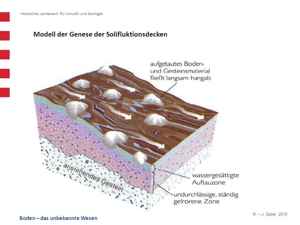K. – J. Sabel 2010 Hessisches Landesamt für Umwelt und Geologie Modell der Genese der Solifluktionsdecken Boden – das unbekannte Wesen