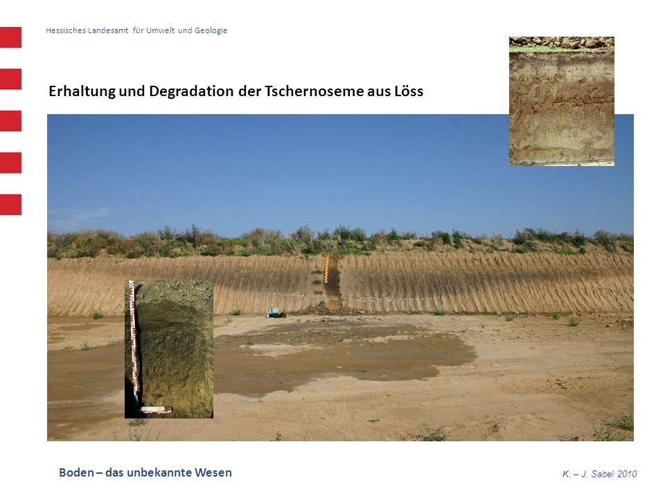 K. – J. Sabel 2010 Hessisches Landesamt für Umwelt und Geologie Erhaltung und Degradation der Tschernoseme aus Löss Boden – das unbekannte Wesen