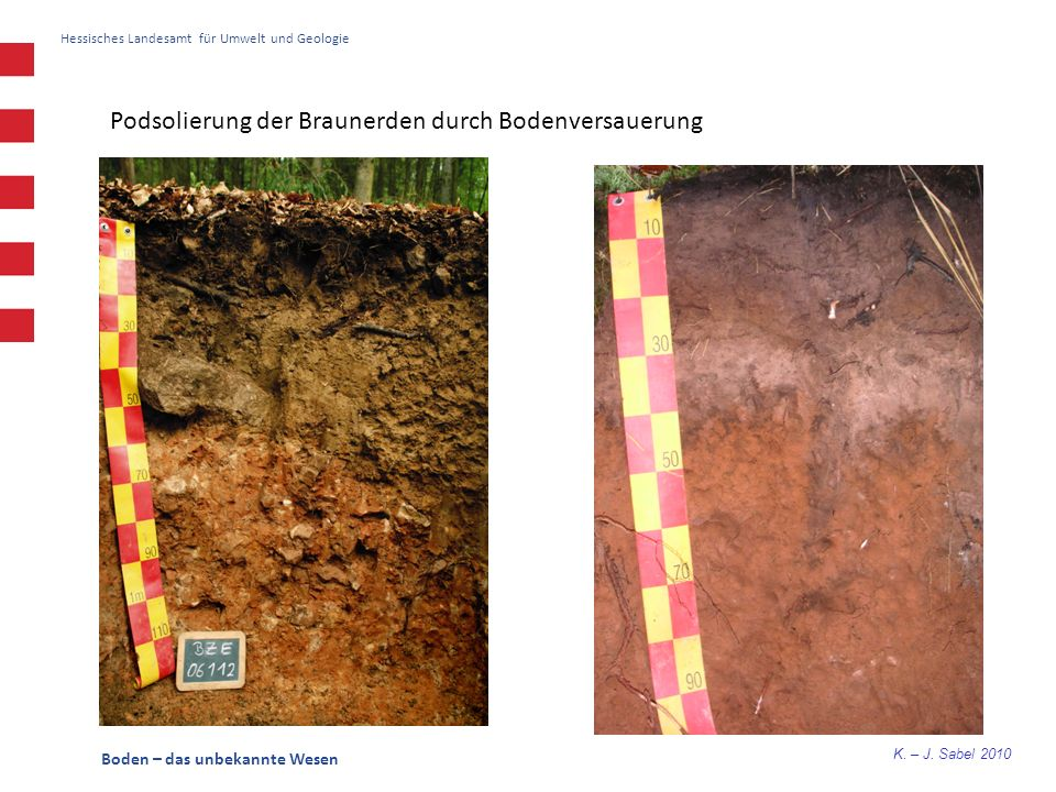 K. – J. Sabel 2010 Hessisches Landesamt für Umwelt und Geologie Boden – das unbekannte Wesen Podsolierung der Braunerden durch Bodenversauerung