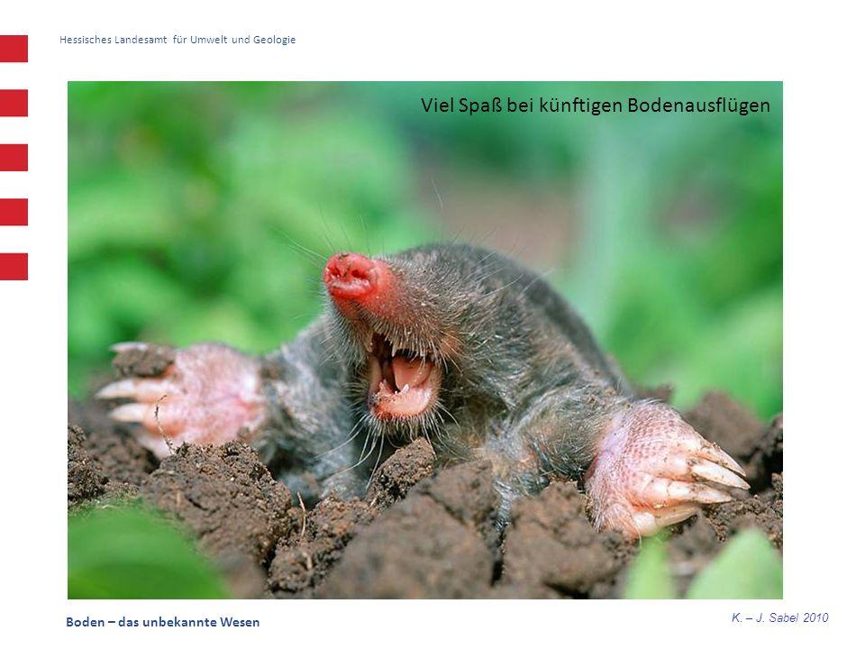 K. – J. Sabel 2010 Boden – das unbekannte Wesen Hessisches Landesamt für Umwelt und Geologie Viel Spaß bei künftigen Bodenausflügen