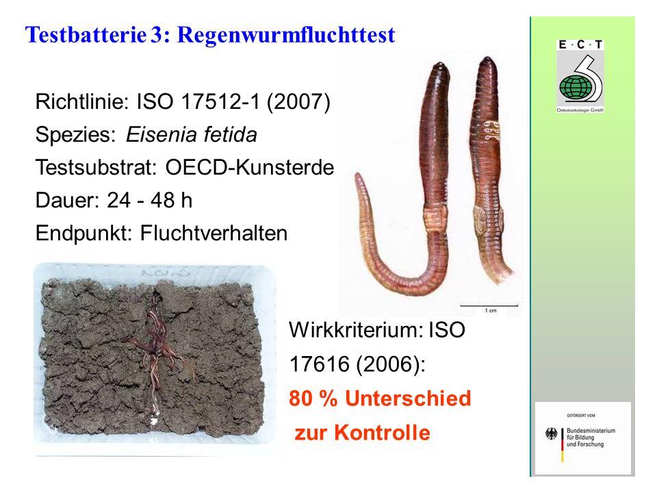 Testbatterie 3: Regenwurmfluchttest Richtlinie: ISO 17512-1 (2007) Spezies: Eisenia fetida Testsubstrat: OECD-Kunsterde Dauer: 24 - 48 h Endpunkt: Flu