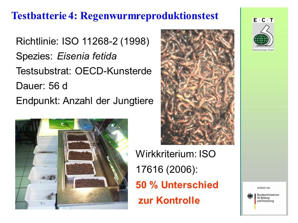 Testbatterie 4: Regenwurmreproduktionstest Richtlinie: ISO 11268-2 (1998) Spezies: Eisenia fetida Testsubstrat: OECD-Kunsterde Dauer: 56 d Endpunkt: A