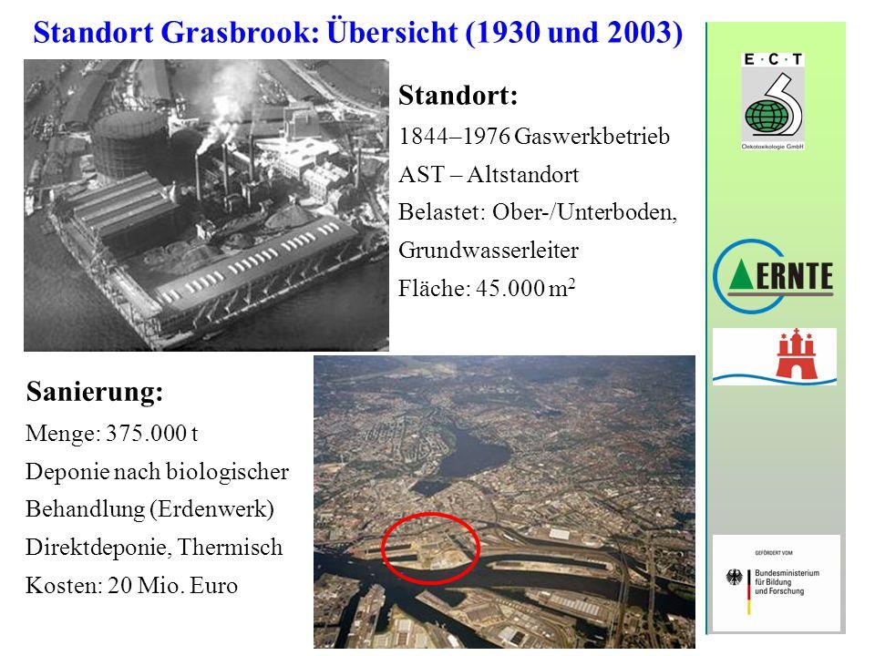 Standort Grasbrook: Übersicht (1930 und 2003) Standort: 1844–1976 Gaswerkbetrieb AST – Altstandort Belastet: Ober-/Unterboden, Grundwasserleiter Fläch