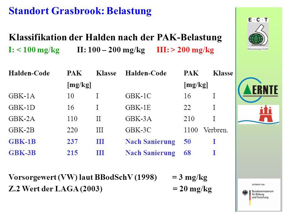 Standort Grasbrook: Belastung Klassifikation der Halden nach der PAK-Belastung I: 200 mg/kg Halden-CodePAKKlasseHalden-CodePAK Klasse [mg/kg] GBK-1A 1