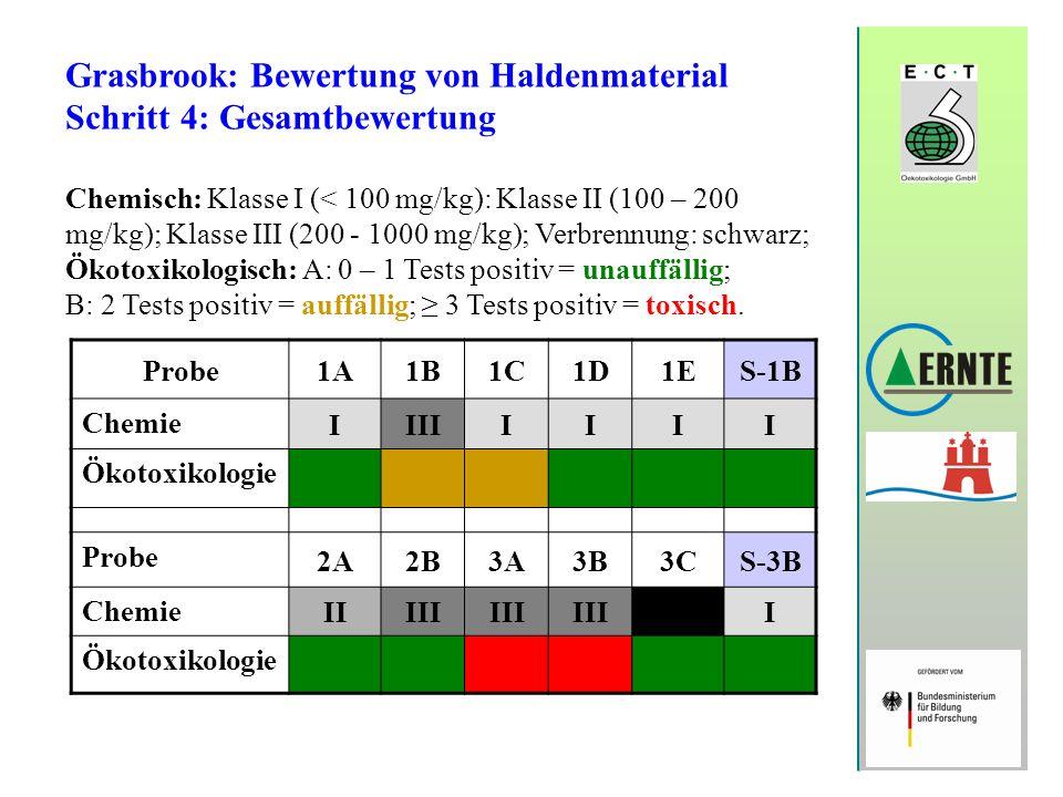 Grasbrook: Bewertung von Haldenmaterial Schritt 4: Gesamtbewertung Chemisch: Klasse I (< 100 mg/kg): Klasse II (100 – 200 mg/kg); Klasse III (200 - 10
