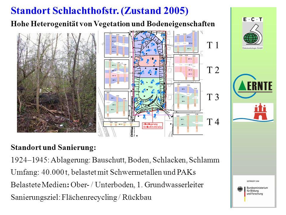 Standort Schlachthofstr. (Zustand 2005) Hohe Heterogenität von Vegetation und Bodeneigenschaften Standort und Sanierung: 1924–1945: Ablagerung: Bausch