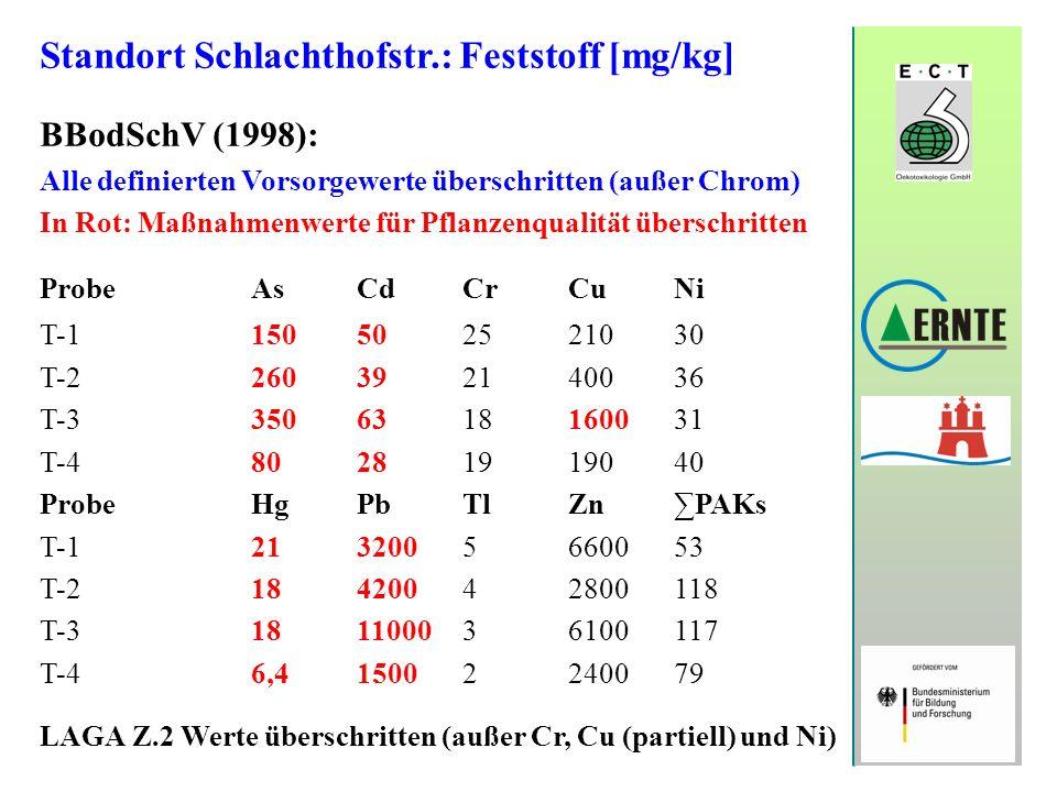 Standort Schlachthofstr.: Feststoff [mg/kg] BBodSchV (1998): Alle definierten Vorsorgewerte überschritten (außer Chrom) In Rot: Maßnahmenwerte für Pfl
