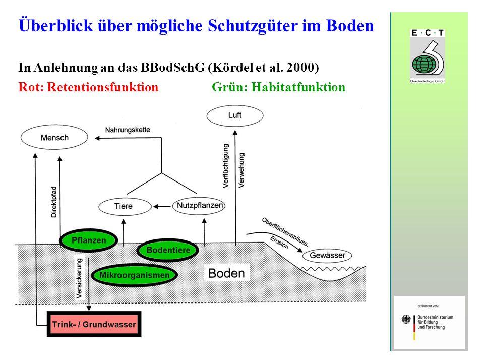 Überblick über mögliche Schutzgüter im Boden In Anlehnung an das BBodSchG (Kördel et al. 2000) Rot: RetentionsfunktionGrün: Habitatfunktion