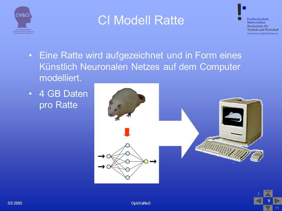 2 11 9 OptiVaNeSSS 2005 CI Modell Ratte Eine Ratte wird aufgezeichnet und in Form eines Künstlich Neuronalen Netzes auf dem Computer modelliert. 4 GB