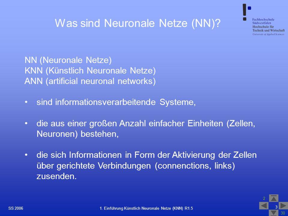 SS 2006 2 30 3 1. Einführung Künstlich Neuronale Netze (KNN) R1.5 Was sind Neuronale Netze (NN)? NN (Neuronale Netze) KNN (Künstlich Neuronale Netze)