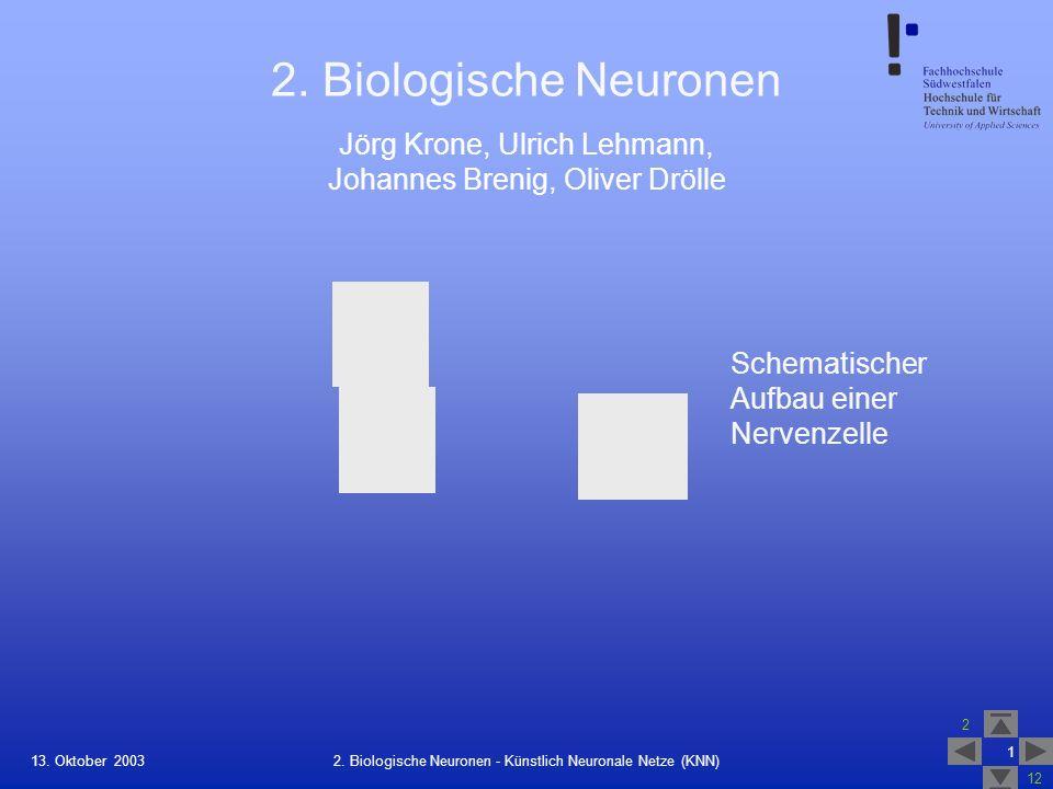13. Oktober 2003 2 12 1 2. Biologische Neuronen - Künstlich Neuronale Netze (KNN) 2. Biologische Neuronen Schematischer Aufbau einer Nervenzelle Jörg
