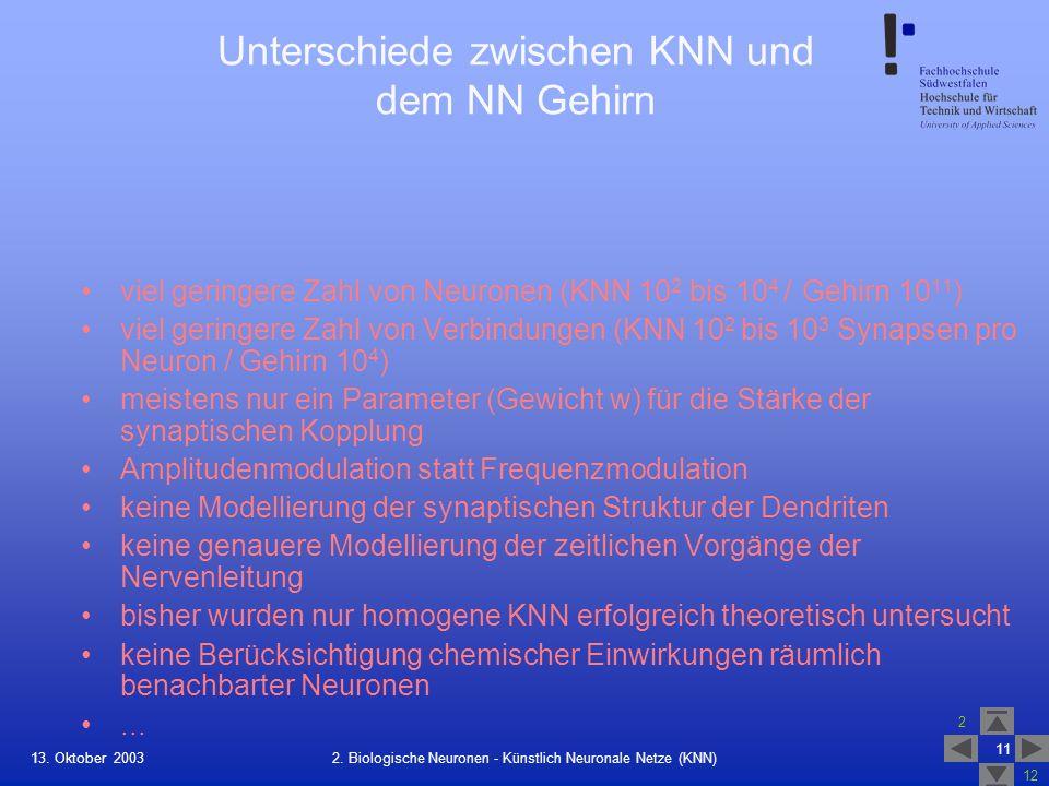 13. Oktober 2003 2 12 11 2. Biologische Neuronen - Künstlich Neuronale Netze (KNN) Unterschiede zwischen KNN und dem NN Gehirn viel geringere Zahl von