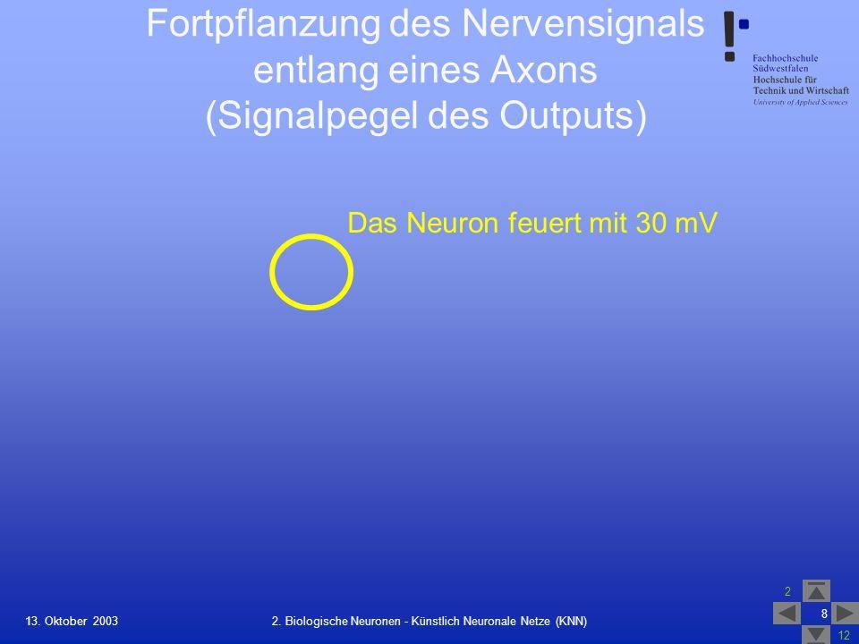 13. Oktober 2003 2 12 8 2. Biologische Neuronen - Künstlich Neuronale Netze (KNN) Fortpflanzung des Nervensignals entlang eines Axons (Signalpegel des