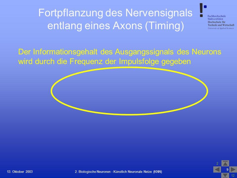 13. Oktober 2003 2 12 9 2. Biologische Neuronen - Künstlich Neuronale Netze (KNN) Fortpflanzung des Nervensignals entlang eines Axons (Timing) Der Inf