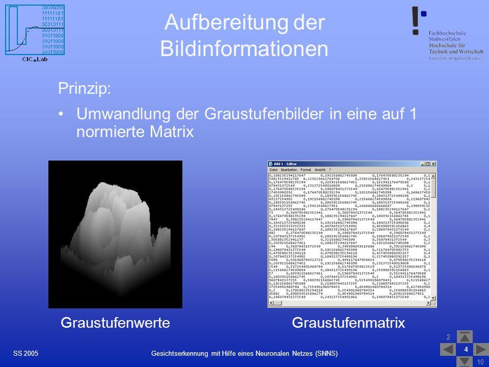 2 10 4 Gesichtserkennung mit Hilfe eines Neuronalen Netzes (SNNS)SS 2005 Aufbereitung der Bildinformationen Prinzip: Umwandlung der Graustufenbilder i