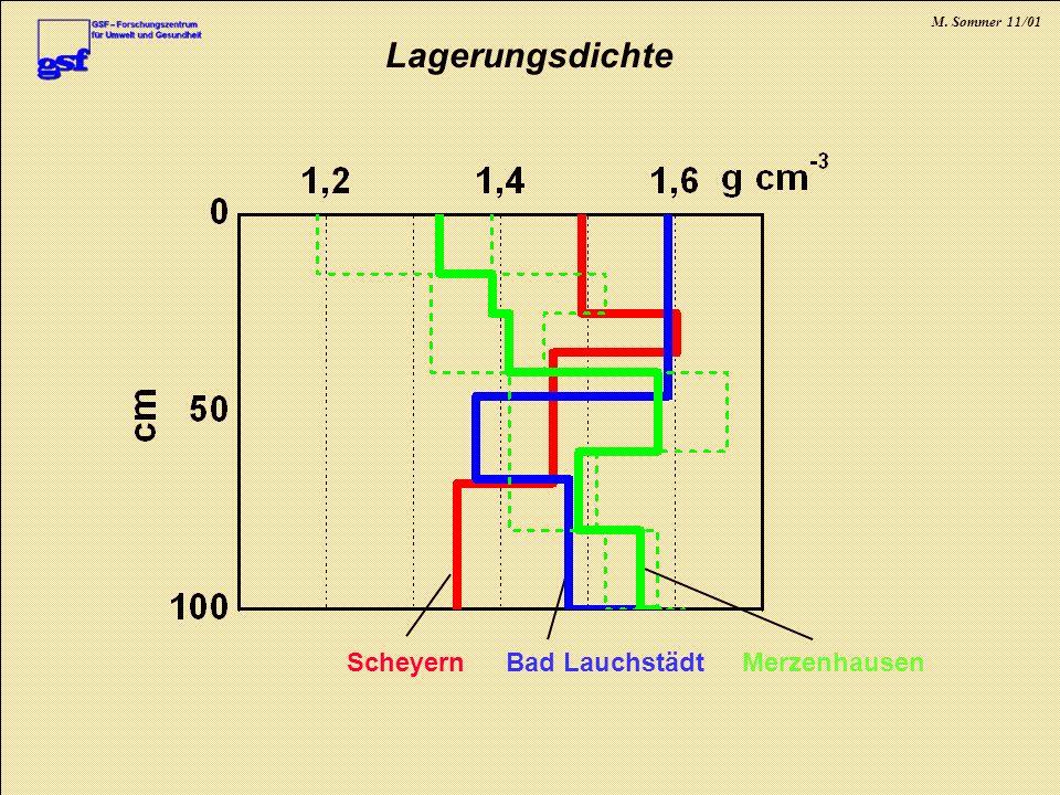 M. Sommer 11/01 Lagerungsdichte MerzenhausenBad LauchstädtScheyern