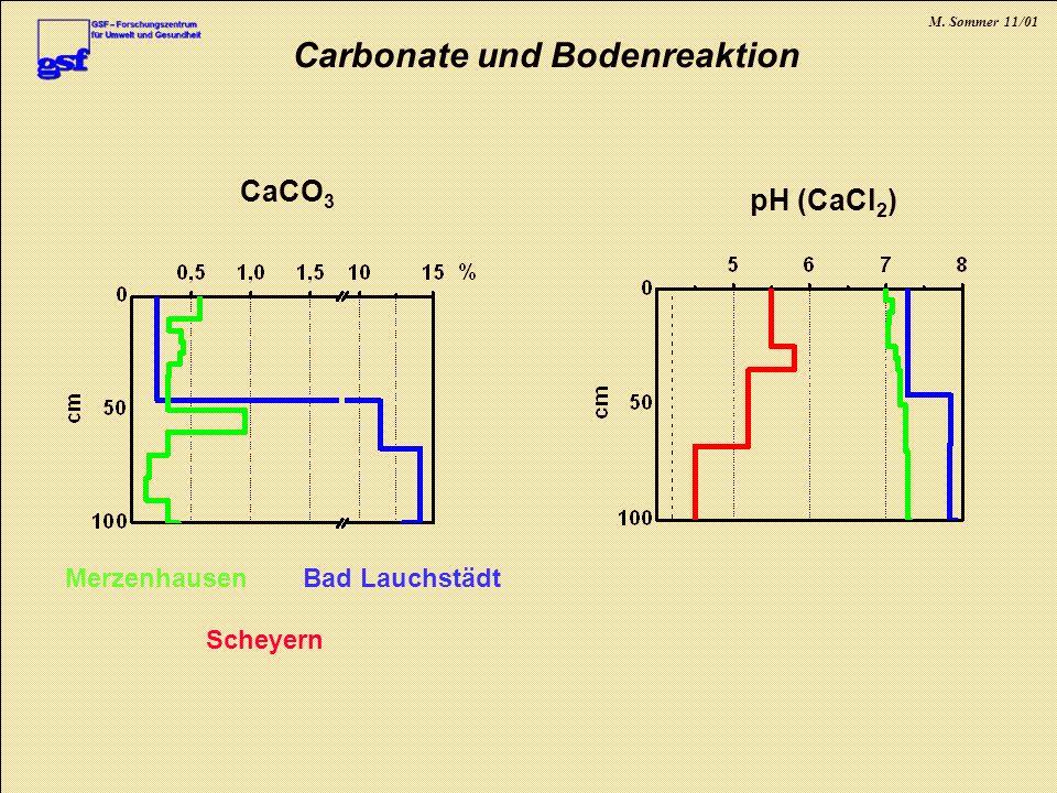 M. Sommer 11/01 Carbonate und Bodenreaktion Bad LauchstädtMerzenhausen Scheyern CaCO 3 pH (CaCl 2 )