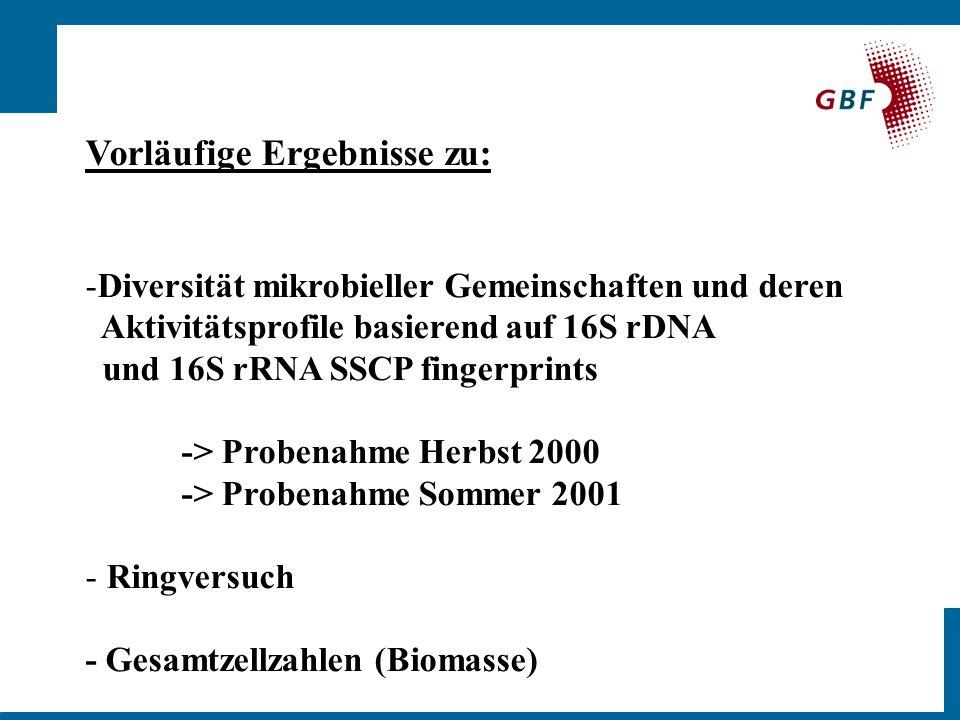 Vorläufige Ergebnisse zu: -Diversität mikrobieller Gemeinschaften und deren Aktivitätsprofile basierend auf 16S rDNA und 16S rRNA SSCP fingerprints -> Probenahme Herbst 2000 -> Probenahme Sommer 2001 - Ringversuch - Gesamtzellzahlen (Biomasse)