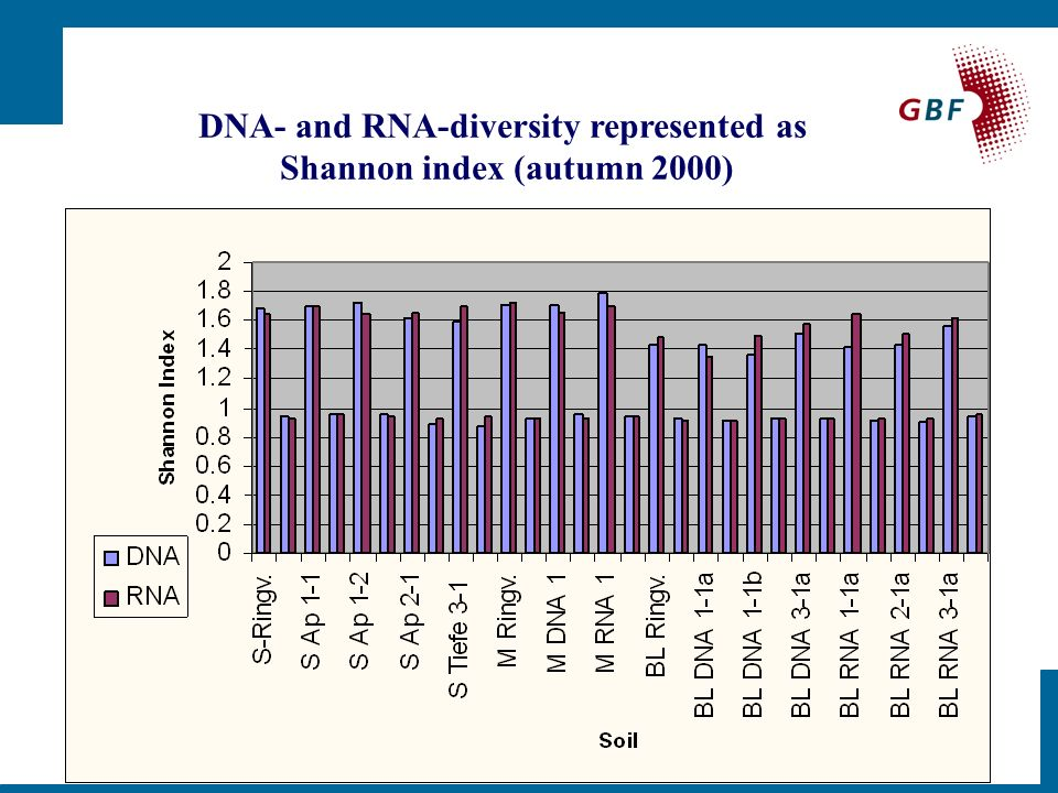 DNA- and RNA-diversity represented as Shannon index (autumn 2000)