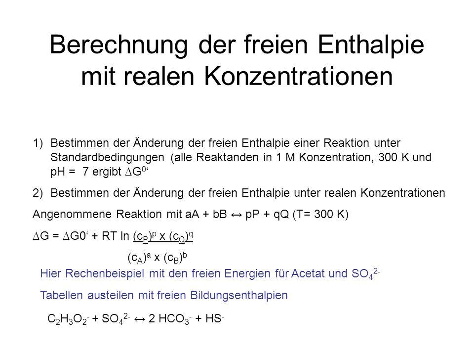 Berechnung der freien Enthalpie mit realen Konzentrationen C 2 H 3 O 2 - + SO 4 2- 2 HCO 3 - + HS - 1)Bestimmen der Änderung der freien Enthalpie einer Reaktion unter Standardbedingungen (alle Reaktanden in 1 M Konzentration, 300 K und pH = 7 ergibt G 0 2)Bestimmen der Änderung der freien Enthalpie unter realen Konzentrationen Angenommene Reaktion mit aA + bB pP + qQ (T= 300 K) G = G0 + RT ln (c P ) p x (c Q ) q (c A ) a x (c B ) b Hier Rechenbeispiel mit den freien Energien für Acetat und SO 4 2- Tabellen austeilen mit freien Bildungsenthalpien