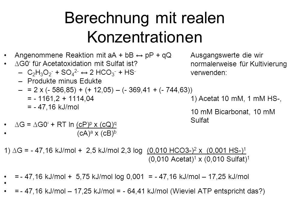Berechnung mit realen Konzentrationen Angenommene Reaktion mit aA + bB pP + qQ G0 für Acetatoxidation mit Sulfat ist.