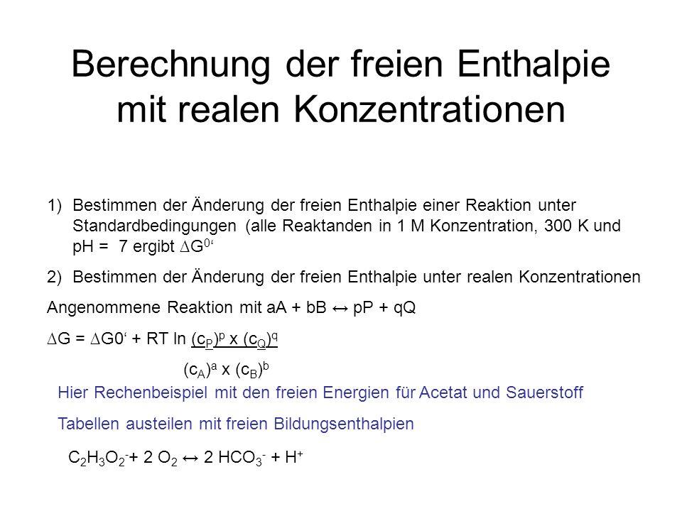 Berechnung der freien Enthalpie mit realen Konzentrationen C 2 H 3 O 2 - + 2 O 2 2 HCO 3 - + H + 1)Bestimmen der Änderung der freien Enthalpie einer Reaktion unter Standardbedingungen (alle Reaktanden in 1 M Konzentration, 300 K und pH = 7 ergibt G 0 2)Bestimmen der Änderung der freien Enthalpie unter realen Konzentrationen Angenommene Reaktion mit aA + bB pP + qQ G = G0 + RT ln (c P ) p x (c Q ) q (c A ) a x (c B ) b Hier Rechenbeispiel mit den freien Energien für Acetat und Sauerstoff Tabellen austeilen mit freien Bildungsenthalpien