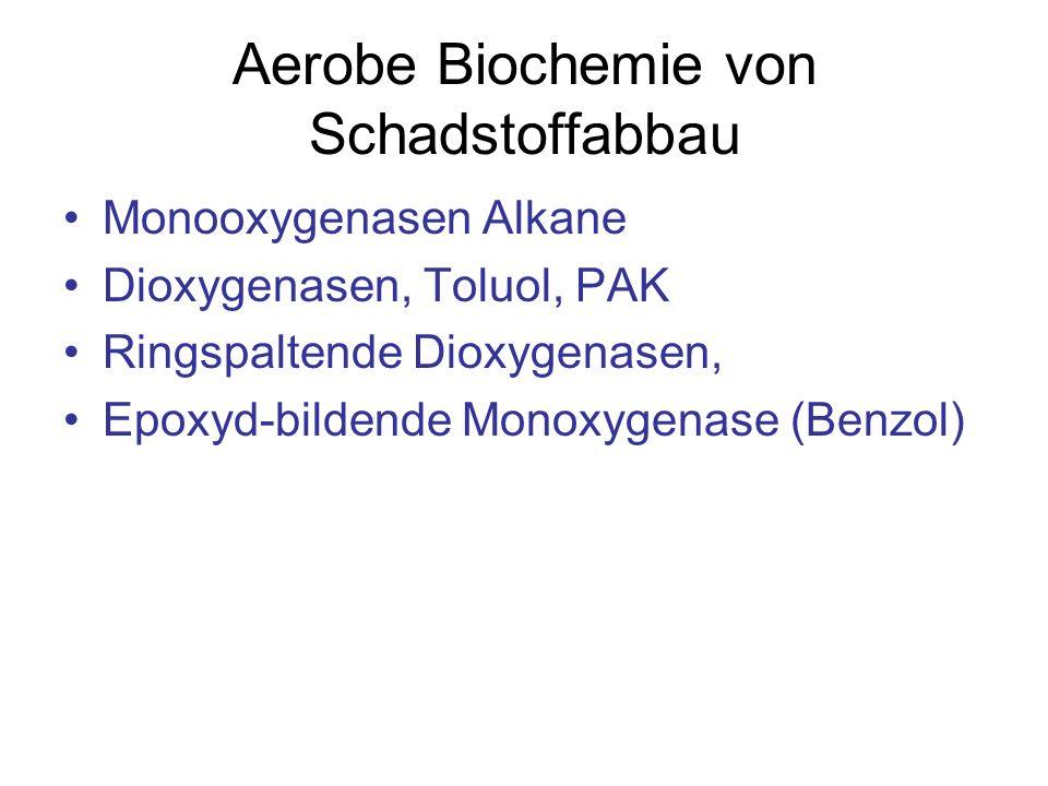 Aerobe Biochemie von Schadstoffabbau Monooxygenasen Alkane Dioxygenasen, Toluol, PAK Ringspaltende Dioxygenasen, Epoxyd-bildende Monoxygenase (Benzol)
