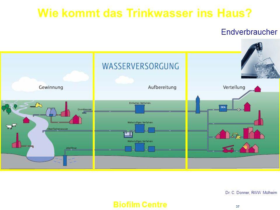 37 Biofilm Centre Wie kommt das Trinkwasser ins Haus? Dr. C. Donner, RWW Mülheim Endverbraucher