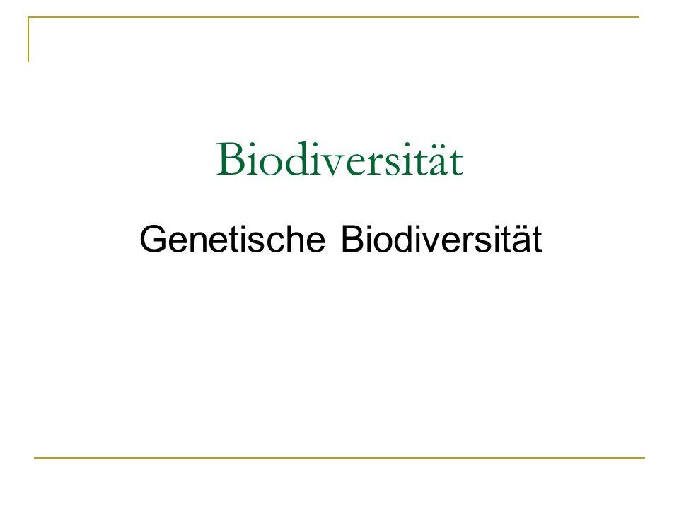 Biodiversität Die Vielfalt der Arten auf der Erde, die genetische Vielfalt sowie die Vielfalt von Ökosystemen.
