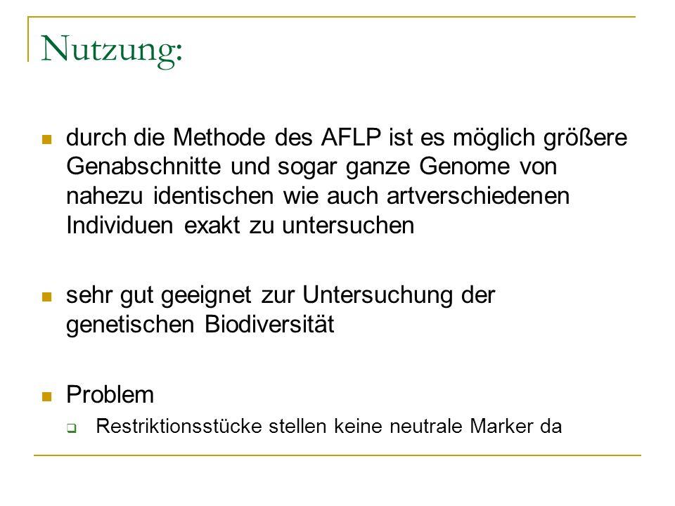 Nutzung: durch die Methode des AFLP ist es möglich größere Genabschnitte und sogar ganze Genome von nahezu identischen wie auch artverschiedenen Indiv