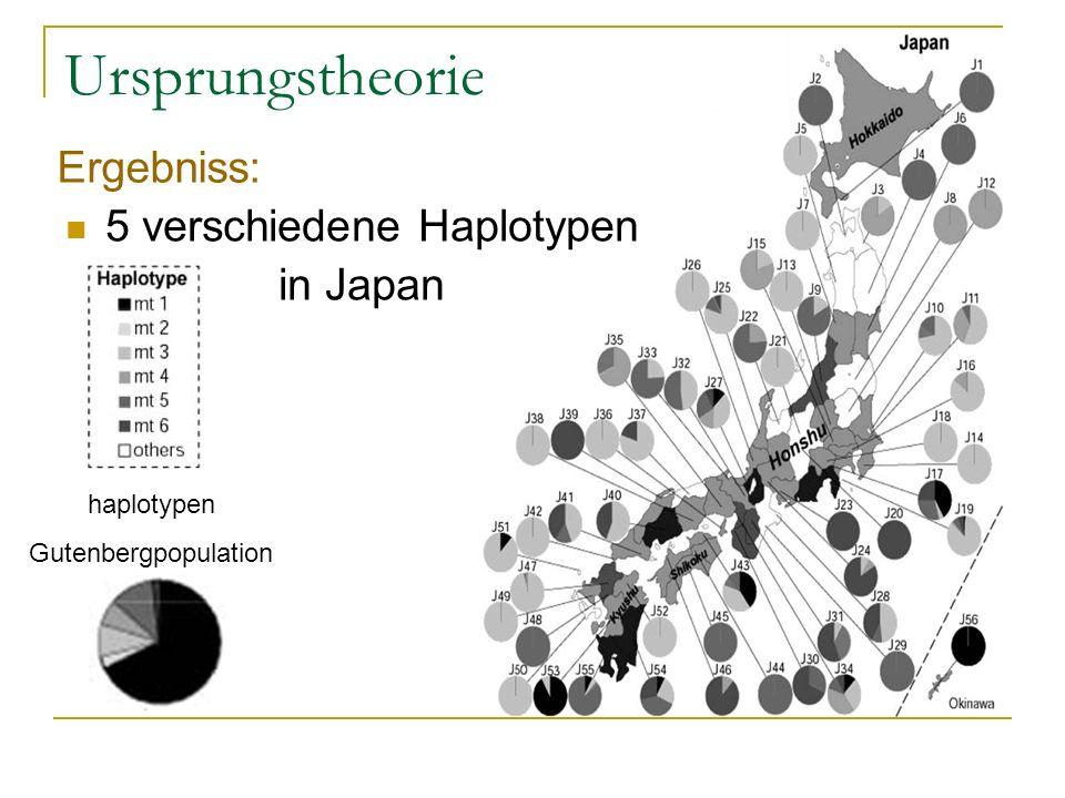 Ursprungstheorie Ergebniss: 5 verschiedene Haplotypen in Japan haplotypen Gutenbergpopulation