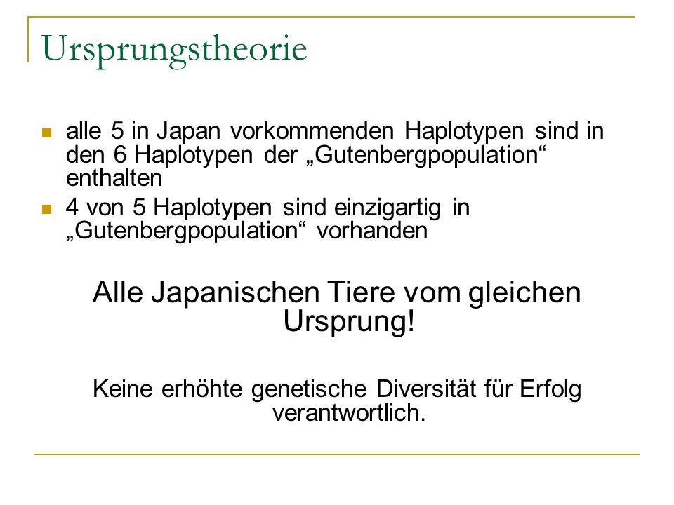 Ursprungstheorie alle 5 in Japan vorkommenden Haplotypen sind in den 6 Haplotypen der Gutenbergpopulation enthalten 4 von 5 Haplotypen sind einzigarti