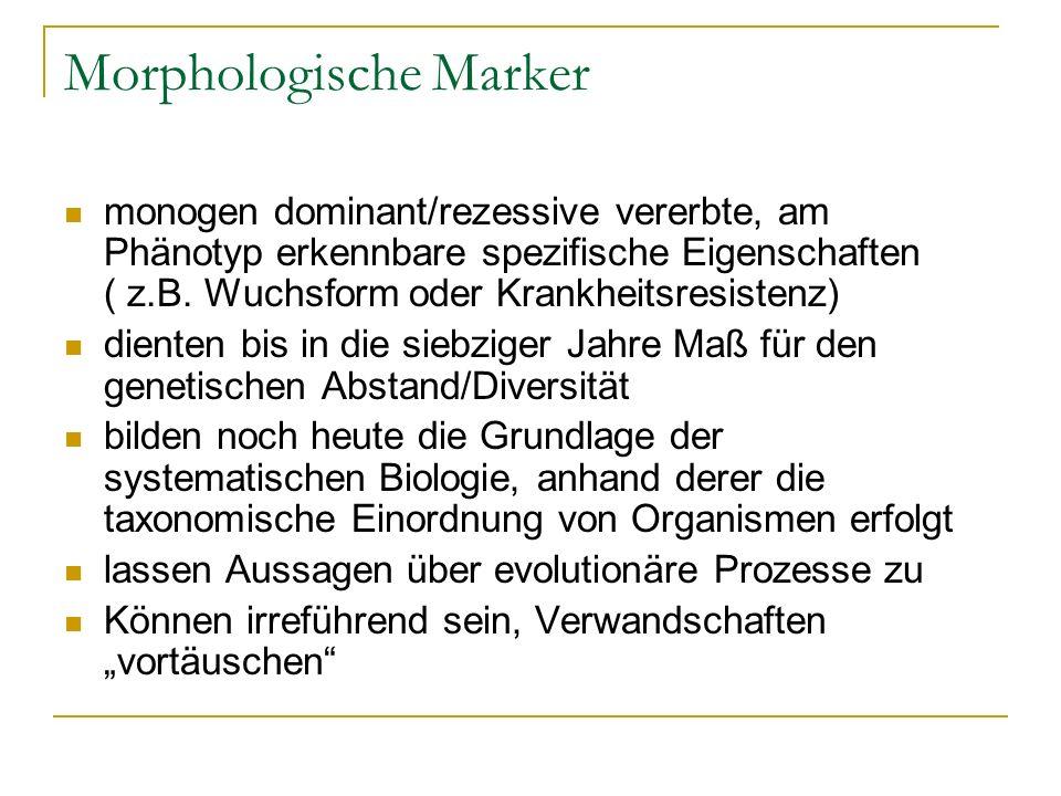 Morphologische Marker monogen dominant/rezessive vererbte, am Phänotyp erkennbare spezifische Eigenschaften ( z.B. Wuchsform oder Krankheitsresistenz)