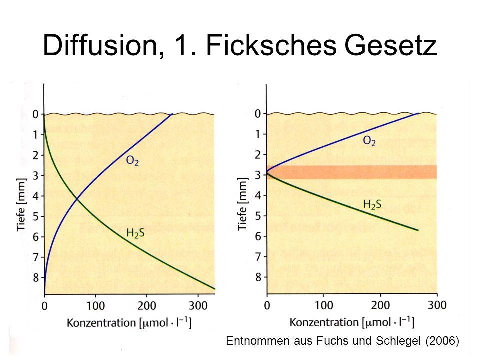 Diffusion, 1. Ficksches Gesetz Entnommen aus Fuchs und Schlegel (2006)