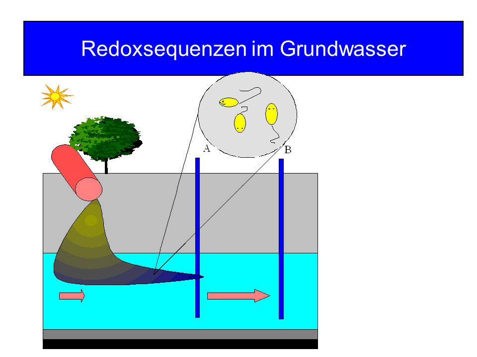 Unsaturated zone Saturated zone Depth [m bls] Toluene [mg l -1 ]Sulfate [mg l -1 ] Sulfide [mg l -1 ] δ 18 O / δ 34 S [] δ 18 O δ 34 S Sulfate Isotope Analysis