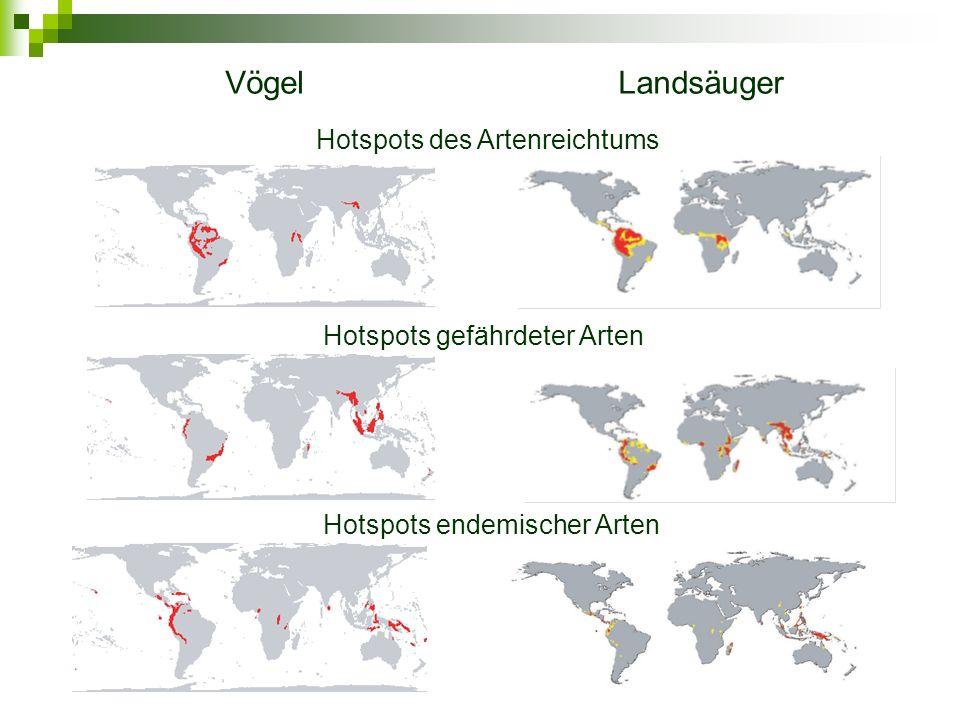 VögelLandsäuger Hotspots des Artenreichtums Hotspots gefährdeter Arten Hotspots endemischer Arten