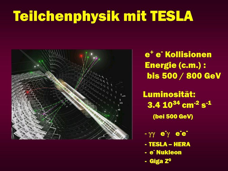 Teilchenphysik mit TESLA e + e - Kollisionen Energie (c.m.) : bis 500 / 800 GeV Luminosität: 3.4 10 34 cm -2 s -1 (bei 500 GeV) - e - e - e - - TESLA