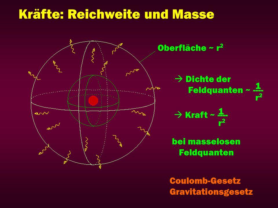 Kräfte: Reichweite und Masse Oberfläche ~ r 2 Dichte der Feldquanten ~ ---- Kraft ~ ---- r2r2 r2r2 1 1 bei masselosen Feldquanten Coulomb-Gesetz Gravi