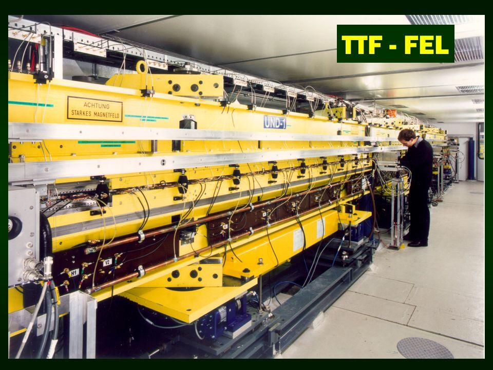 TTF - FEL