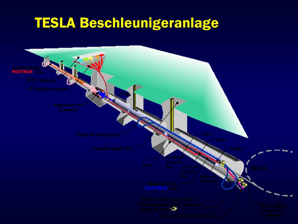 TTF: TESLA Test Facility Aufbau eines Moduls Aus 8 9-Zellern