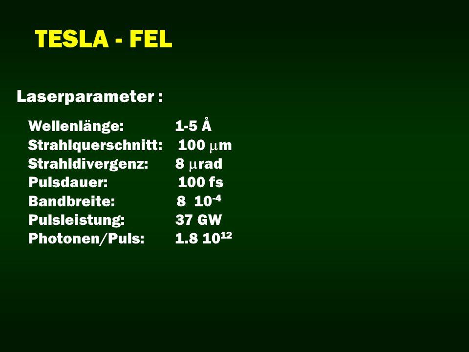 TESLA - FEL Wellenlänge: 1-5 Å Strahlquerschnitt: 100 m Strahldivergenz: 8 rad Pulsdauer: 100 fs Bandbreite: 8 10 -4 Pulsleistung: 37 GW Photonen/Puls