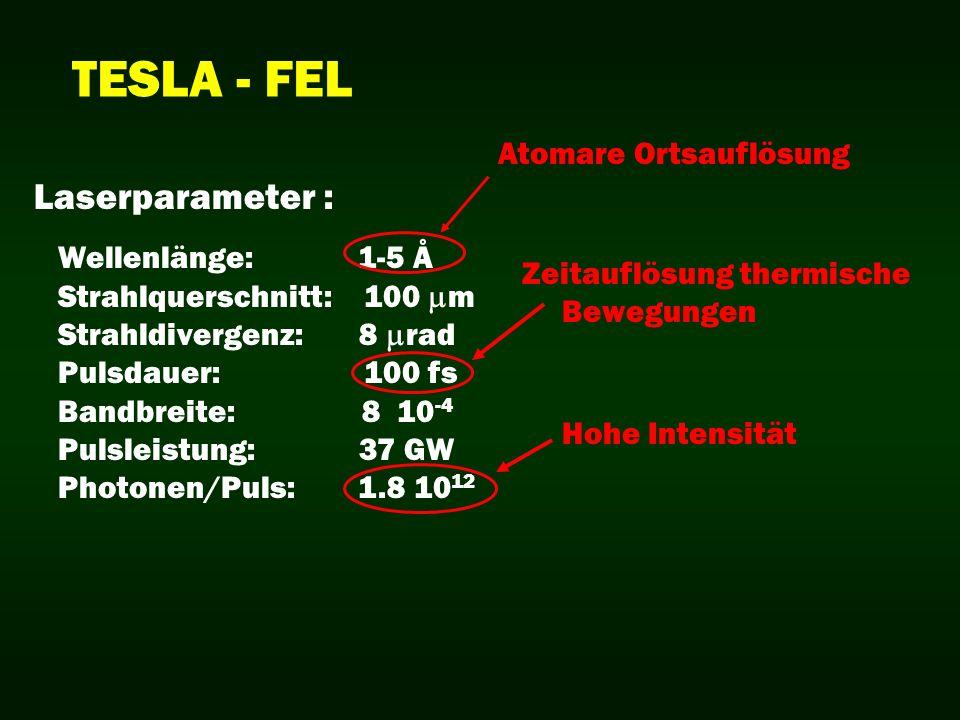 Wellenlänge: 1-5 Å Strahlquerschnitt: 100 m Strahldivergenz: 8 rad Pulsdauer: 100 fs Bandbreite: 8 10 -4 Pulsleistung: 37 GW Photonen/Puls: 1.8 10 12