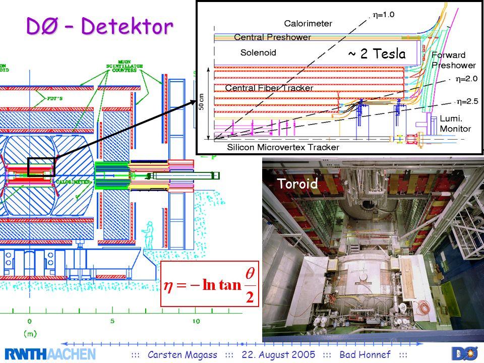 ::: Carsten Magass ::: 22. August 2005 ::: Bad Honnef ::: DØ – Detektor ~ 2 Tesla Toroid